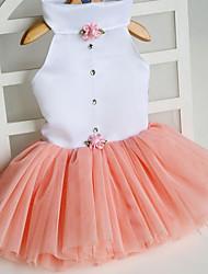 Cat Dog Dress Orange Green Pink Rose Dog Clothes Summer Spring/Fall Princess Cute