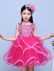 Short / Mini Tulle Junior Bridesmaid Dress Ball Gown Jewel with Beading