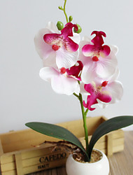 1 Branch Dried Flower Orchids Violet Tabletop Flower Artificial Flowers