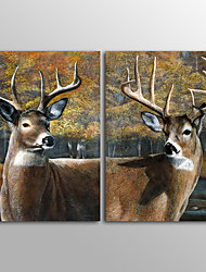 Canvas Print Animal Modern Classic DeerTwo Panels Canvas Vertical Print Wall Decor For Home Decoration