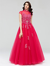 Ball Gown Princess Illusion Neckline Floor Length Lace Tulle Formal Evening Dress with Beading Crystal Detailing Lace Sequins by QZ
