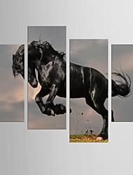 Художественная печать Животное Modern Классика,5 панелей Холст Любая форма Печать Искусство Декор стены For Украшение дома