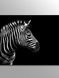 Canvas Print Animal Modern Zebra One Panel Canvas Horizontal Print Wall Decor For Home Decoration