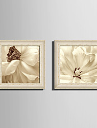 E-HOME® Framed Canvas Art White Petals Flowers Framed Canvas Print One Pcs