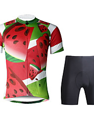 Paladin Sport Men  Cycling Jersey  Shorts Suit DT741