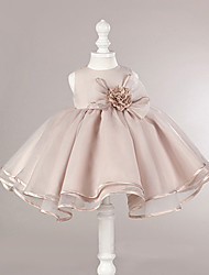 Ball Gown Short / Mini Flower Girl Dress - Organza Sleeveless Jewel Neck with Flower