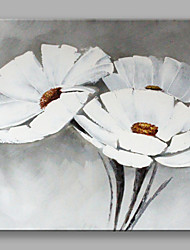 Hand Painted White Flowers Oil Painting with Stretched Frame For Home Decoration