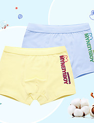 Boys' 2pcs Cotton Underwear Box (3-12 Years Old)