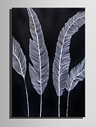 Mini Size E-HOME Oil painting Modern White Feather Pure Hand Draw Frameless Decorative Painting