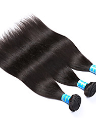 Vinsteen Peruvian Human Hair Straight 3 Bundles 8-14Inch Human Hair Wefts Soft Smooth Hair Extensions Curly Human Hair Weave Cheap Human Hair Bundles