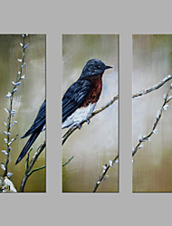 IARTS® Hand Painted Modern Abstract Bird on the Winter Flower Tree Set of 3 with Stretched Frame Picture For Home Decoration Ready To Hang