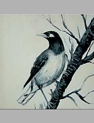 Peint à la main Animal Abstrait Un Panneau Toile Imprimé For Décoration d'intérieur