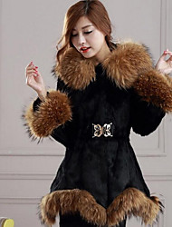 Women's Casual/Daily Active Fall Winter Fur Coat,Solid Hooded Long Sleeve Long Rex Rabbit Fur
