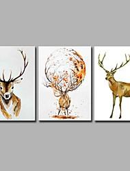 Peint à la main Animal Artistique Abstrait Inspiré de la nature Rustique Moderne/Contemporain Bureau / Affaires Noël Nouvel AnTrois