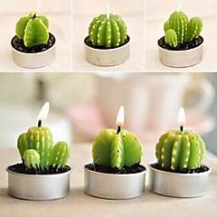 6 x Kaktus Blumentopf gesetzt Kerzen Kerze-Partei-Weihnachtshochzeitsdekorationen (gelegentliche Farbe)