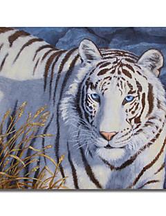 Toile imprimée art en cristal animal yeux de forêt Crista avec cadre étiré