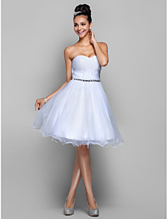 TS Couture® Cocktail Party / Prom / Holiday Dress - White Plus Sizes / Petite A-line / Princess Sweetheart Knee-length Organza