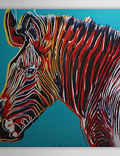 Le zèbre de toile tendue art pop art animaux grevy prêt à accrocher