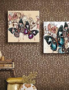 étiré sur toile couleur papillon peinture décorative ensemble de deux