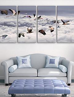 e-home® lona esticada arte set pássaro decoração pintura de 4