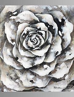 Natura morta / Fantasia / Tempo libero / Botanical / Moderno Print Canvas Un pannello Pronto da appendere , Quadrato
