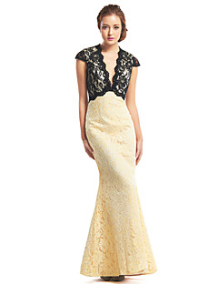 TS Couture® Prom  Formal Evening Dress Trumpet / Mermaid V-neck Ankle-length Lace with Lace