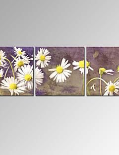 Landscape / Patriotismi / Moderni / Romantiikka / Famous Canvas Tulosta 3 paneeli Valmis Hang,Horizontal
