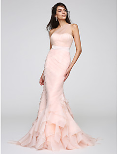 TS Couture® Formal Evening Dress Trumpet / Mermaid One Shoulder Sweep / Brush Train Organza / Tulle with Side Draping