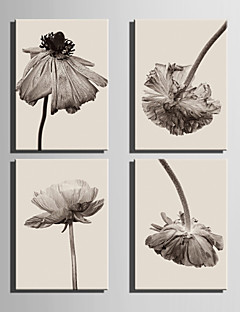 E-HOME® Stretched Canvas Art Withered Flowers Decoration Painting  Set of 4
