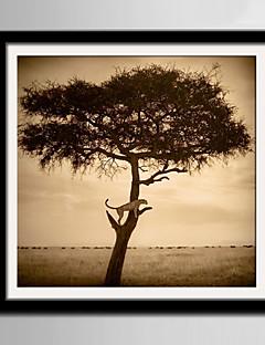 E-HOME® Framed Canvas Art, A Tree Framed Canvas Print One Pcs