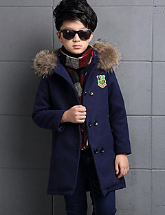 Boy's Casual/Daily Embroidered Jacket & CoatWool / Polyester Winter Blue