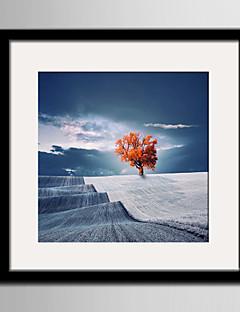 Landskab Indrammet Lærred / Indrammet Sæt Wall Art,PVC Sort Måtte Inkluderet med Frame Wall Art