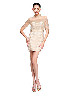 2017 TS Couture® Prom Cocktail Party Dress - Sparkle & Shine Sheath / Column High Neck Short / Mini Tulle with Sequins