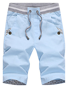 Heren Chic & Modern Medium taille Recht Shorts BroekEffen