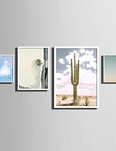 Landscape Virágos / Botanikus Szavak és idézetek Bekeretezett vászon Bekeretezett szett Wall Art,PVC Anyag Fehér Háttéranyag nélküla