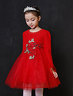 Girl's Birthday Casual/Daily Holiday Sports Solid Embroidered Dress,Cotton Polyester Fall Winter Long Sleeve