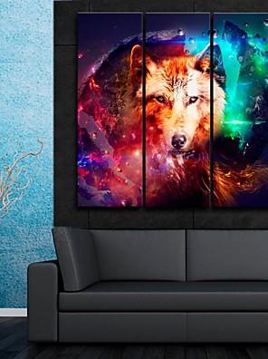 e-FOYER toile tendue es le superbe loup couleur décorative ensemble de trois de peinture