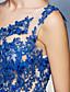 Торжественное мероприятие Платье - Прозрачные ткани А-силуэт На одно плечо Со шлейфом средней длины Шифон сБусины / Кристаллы / Кружева /
