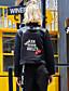 Naisten Pitkähihainen Keskipaksu Stand-kaula-aukko Polyesteri Syksy / Talvi Yksinkertainen Rento/arki / Loma Jakku-Kirjottu Musta
