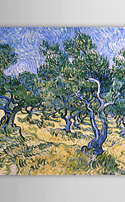 Famous Oil Painting Olive-grove by Van Gogh