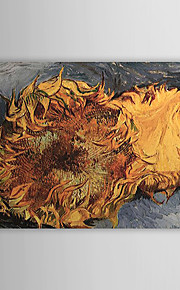 Famous Oil Painting Still-life-with-two-sunflowers by Van Gogh