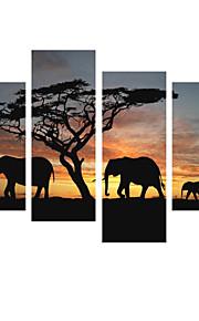 시각 star®4 조각 아프리카 코끼리는 캔버스가 응답 동물 캔버스가 준비 그림을 뻗어