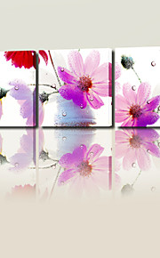 VISUAL STAR®Modern Pink Flowers Still Life Triptych ArtBotanical Canvas Print Three Panels Ready to Hang