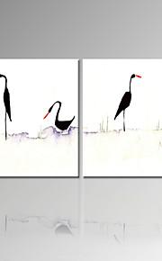 시각 star®high 품질의 조류가 정지하는 두 개의 판넬 동물 벽 예술이 준비 그림 캔버스를 뻗어