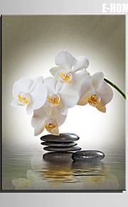 e-home® strukket lerret kunst stein og hvite blomster dekormaling ett stk