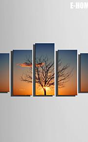 Landskap / Botanisk Canvastryck Fem paneler Redo att hänga , Vertikal