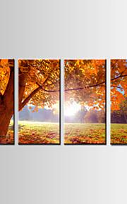 Landskap / Botanisk Lerret Print Fire Paneler Klar til å henge , Vannrett