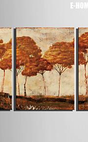 Landskap / Botanisk Canvastryck Tre paneler Redo att hänga , Vertikal