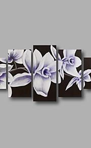 """estirada (listo para colgar) al óleo pintada a mano de pintura de 60 flores modernas """"x32"""" lona de la pared del arte negro blanco"""