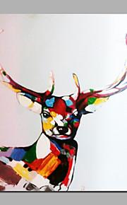 ホームデコ用のカラフルなエゾシカの手描きの絵